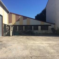 Location Local d'activités Chanteloup-en-Brie 860 m²