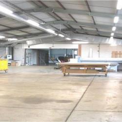 Vente Local d'activités Peltre 3000 m²