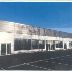 Location Local d'activités Fenouillet 692 m²