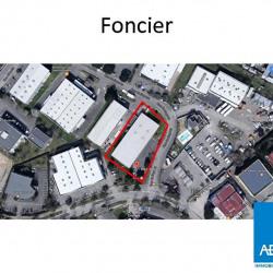 Vente Local d'activités L'Union 1116 m²