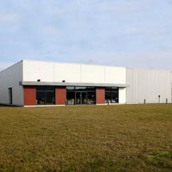 Vente Local d'activités Bailleul 680 m²