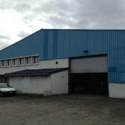 Location Local d'activités Genas 1200 m²
