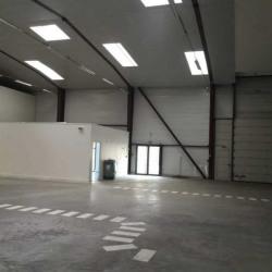Location Entrepôt Saint-Herblain 589 m²