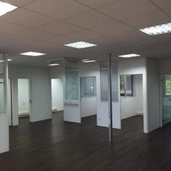 Location Bureau Tassin-la-Demi-Lune 498 m²