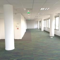 Location Bureau Maisons-Alfort 250 m²
