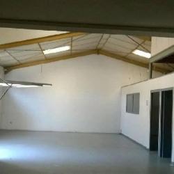 Vente Local d'activités Toulouse 256 m²