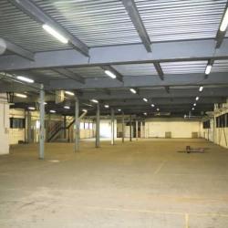 Location Local d'activités Chelles 3950 m²