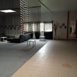 Location Local d'activités Créteil 660 m²