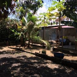 Vente Terrain Cayenne 1800 m²
