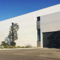Location Local d'activités Mougins 760 m²