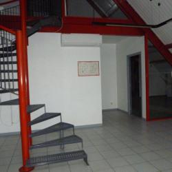 Vente Bureau La Salvetat-Saint-Gilles 360 m²