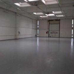 Location Local d'activités Rungis 6447 m²
