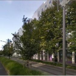 Location Bureau Lyon 3ème 140 m²