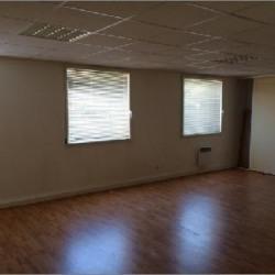Location Local d'activités Brignais 316 m²