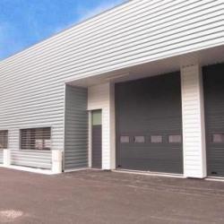 Location Local d'activités Échirolles 349 m²