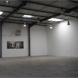 Location Local d'activités Chassieu 678 m²