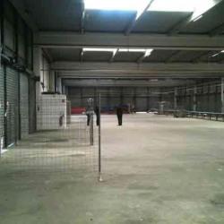 Location Entrepôt Toulouse 3000 m²