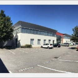 Location Local commercial Oullins 797 m²