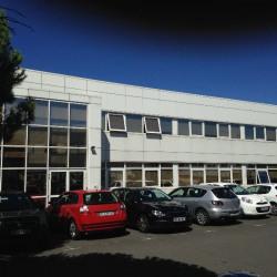Location Bureau Vern-sur-Seiche 490 m²