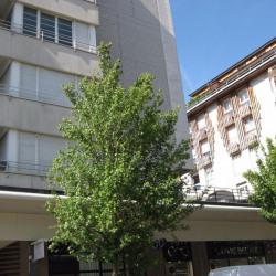 Appartement Saint Germain En Laye 2 pièce (s) 53 m²
