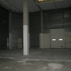 Location Local d'activités Émerainville 828 m²