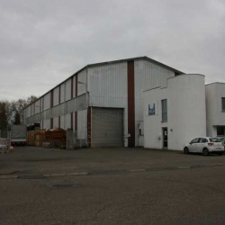 Vente Entrepôt Illkirch-Graffenstaden 1056 m²