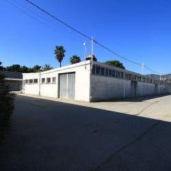 Location Local d'activités Mandelieu-la-Napoule 2160 m²