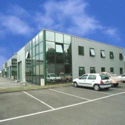 Location Local d'activités Les Mureaux 368 m²