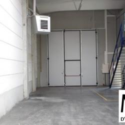 Location Local d'activités Meyzieu 377 m²