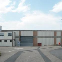 Vente Local d'activités Sarcey 1596 m²