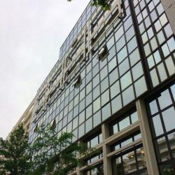 Location Bureau Lyon 6ème 340 m²