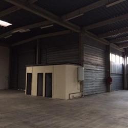 Location Entrepôt Torcy 436 m²