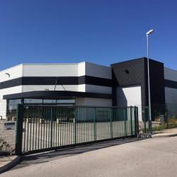 Location Local d'activités Marsannay-la-Côte 800 m²
