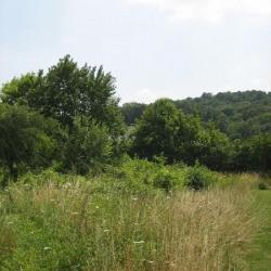 Vente Terrain Cuise-la-Motte (60350)