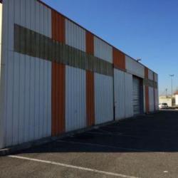 Location Local d'activités Toulouse 1003 m²