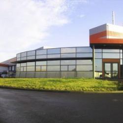 Location Local d'activités Mésanger 3969 m²