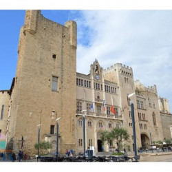 Vente Local commercial Narbonne 0 m²