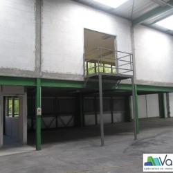 Location Local d'activités Saint-Thibault-des-Vignes 970 m²