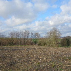 Vente Terrain Rebreuve-Ranchicourt (62150)