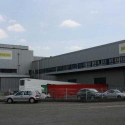 Vente Entrepôt Mundolsheim 6119 m²