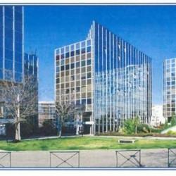 Location Bureau Toulouse 308 m²