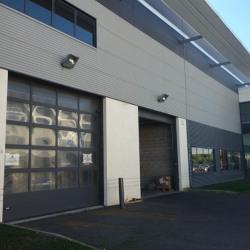Location Local d'activités Gennevilliers 900 m²