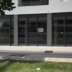 Location Local commercial Castelnau-le-Lez 111 m²