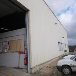 Location Local d'activités Saint-Jean-de-la-Ruelle (45140)
