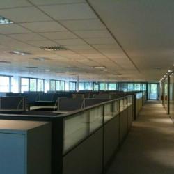 Location Bureau Puteaux 1638 m²