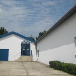 Location Local d'activités Choisy-le-Roi (94600)
