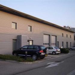 Location Bureau Lyon 7ème 530 m²