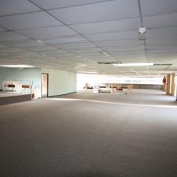 Vente Local commercial Ribérac 1170 m²
