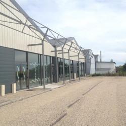 Location Local commercial Franqueville-Saint-Pierre 440 m²