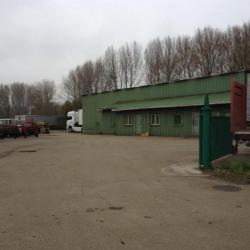 Location Local d'activités Gonfreville-l'Orcher (76700)